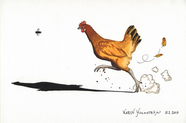 Chicken chasing fly drawing