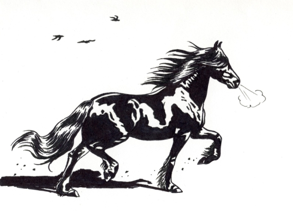 Friesian horse drawing