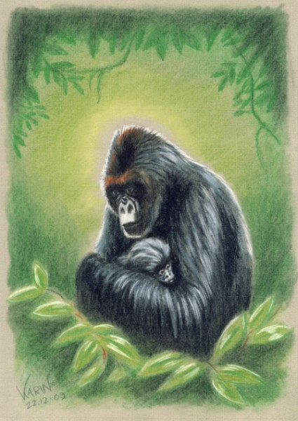 gorilla mother young drawing