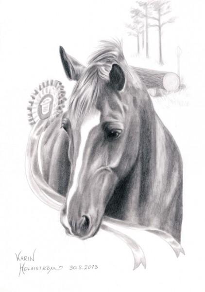 Blyertsteckning av hästhuvud