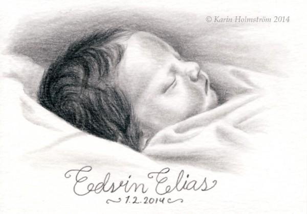 Edvin-blogg