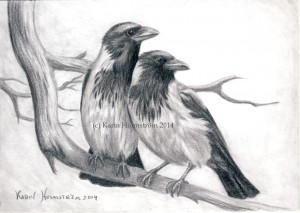 Kråkor-blogg
